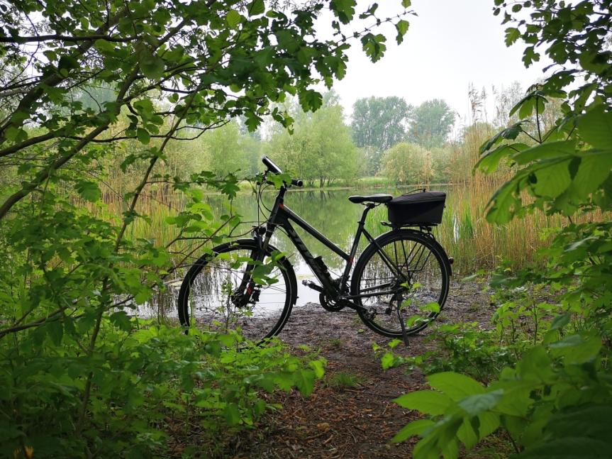 Nebel, Natur und derMaifeiertag